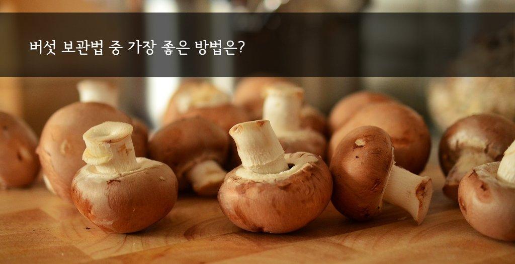 버섯 보관법: 좀 더 오래 신선하게