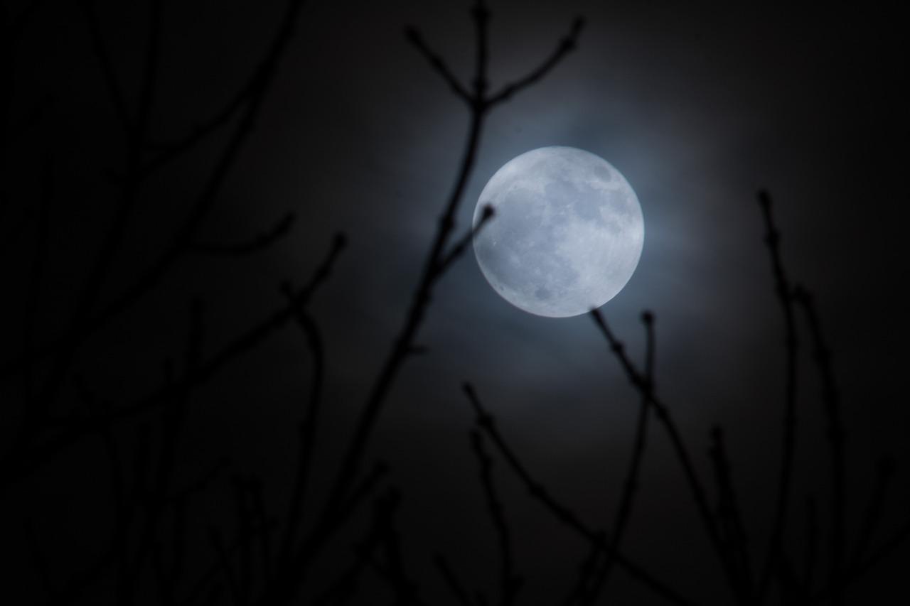 1월31일(2018년) 개기월식: 슈퍼 블루 블러드 문(Moon)